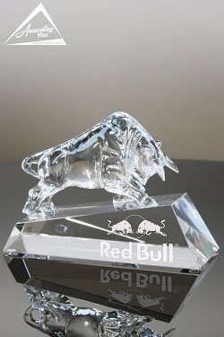 Leadership Bull Award